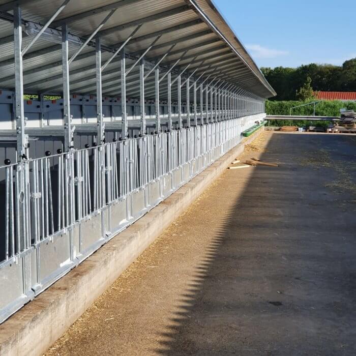 Grote renovatie: 100 ligplekken ombouwen naar Topcalf boxen