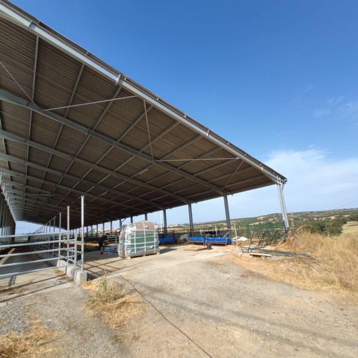 Duo XL kalverboxen in Portugal